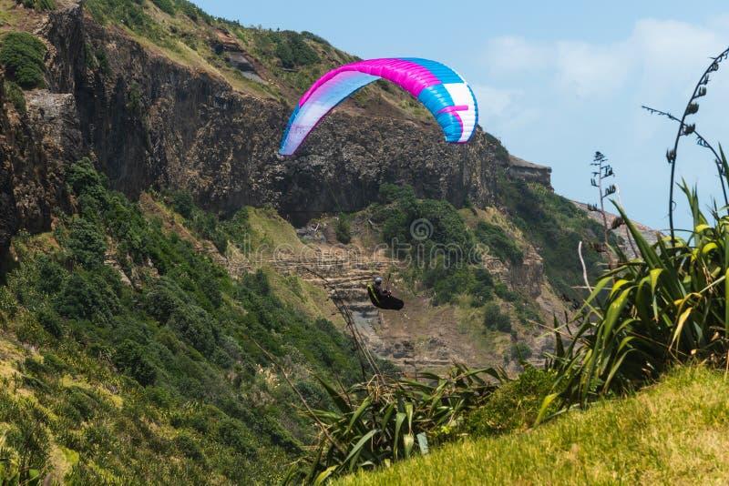 Acantilados de la playa de Muriwai, Nueva Zelanda paragliding fotografía de archivo libre de regalías