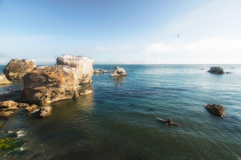 Acantilados de la playa de Pismo y multitud de pájaros El Kayaking alrededor de las rocas Costa costa de California imagen de archivo
