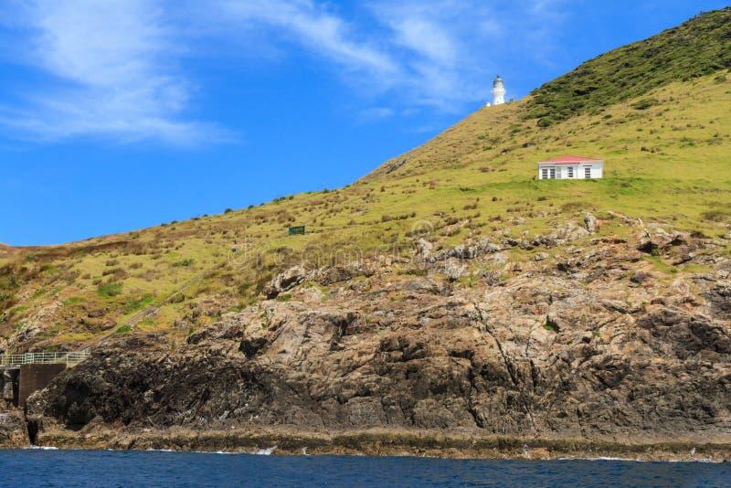 Acantilados del faro y del mar del océano Cabo Brett, NZ imágenes de archivo libres de regalías