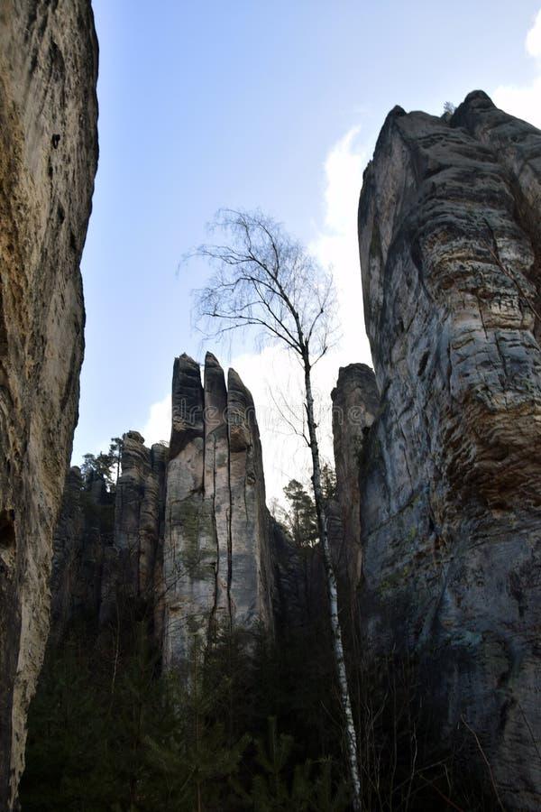 Acantilados en paraíso bohemio - las rocas de la piedra arenisca de Prachov foto de archivo