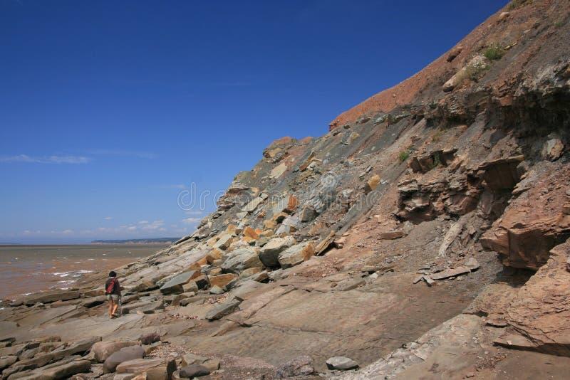 Acantilados fósiles Nueva Escocia de Joggins imagen de archivo
