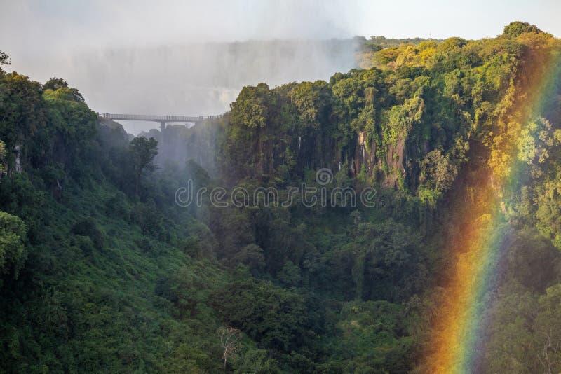 Acantilados tropicales en Victoria Falls imagen de archivo libre de regalías