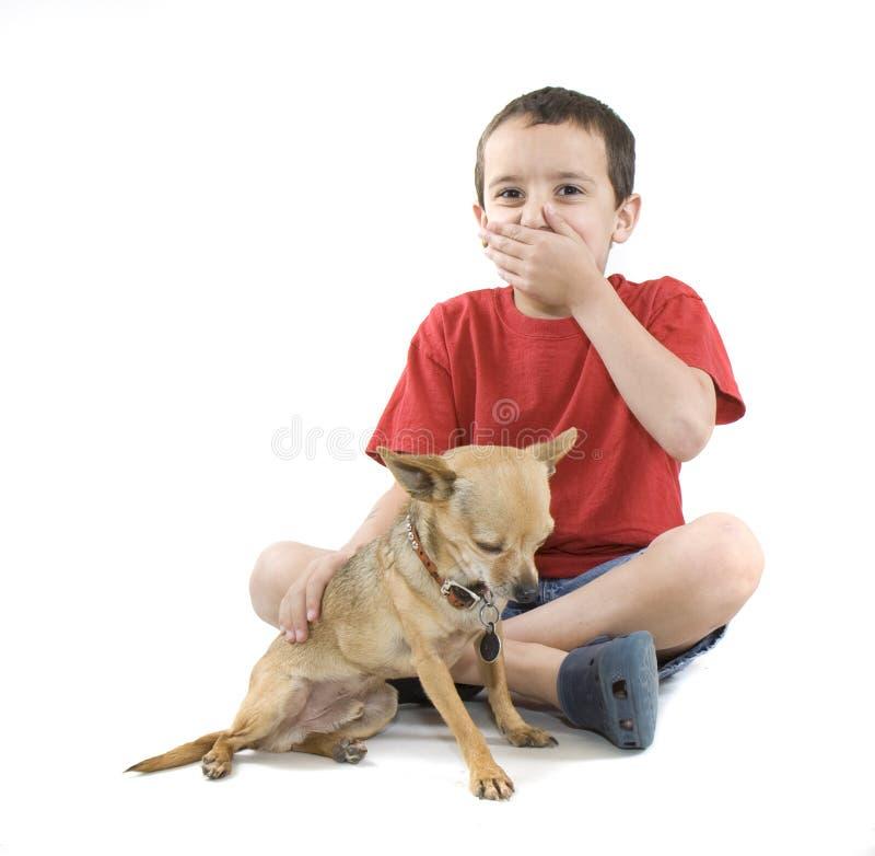 Download Acariciar el perro imagen de archivo. Imagen de collar - 7280475