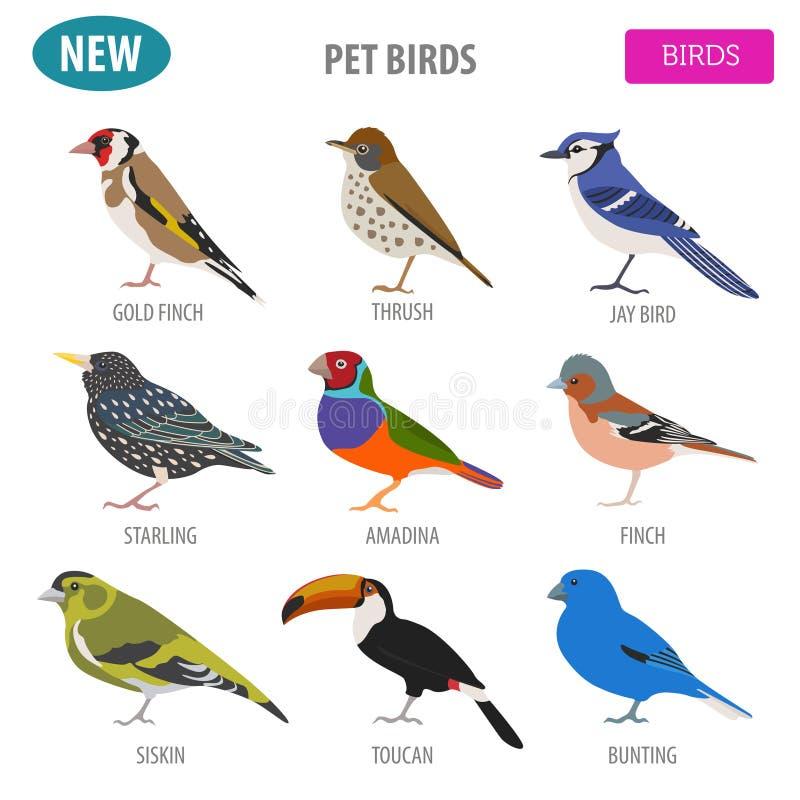 Acaricie los pájaros colección, estilo plano determinado del icono de las razas aislada en wh ilustración del vector