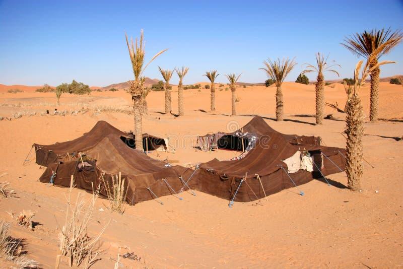 Accampamento beduino immagine stock libera da diritti