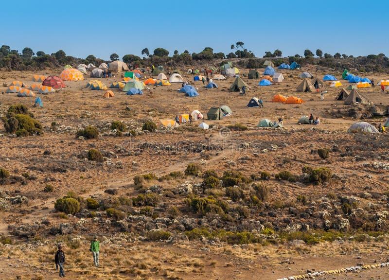 Accampamento della tenda sul supporto Kilimanjaro, accampamento Shira fotografie stock libere da diritti