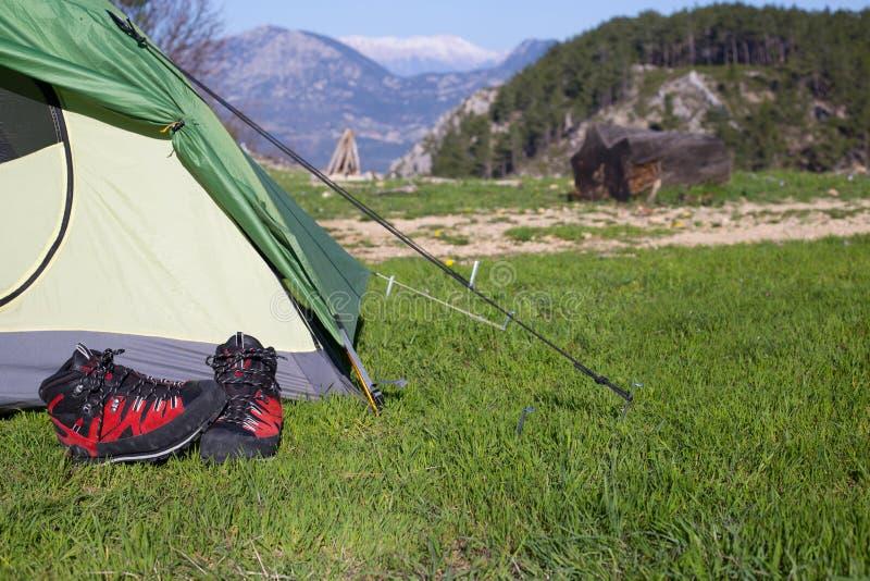 Accampandosi in mezzo al legno, colpo dall'interno della tenda immagini stock libere da diritti
