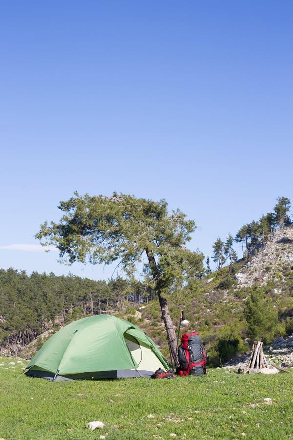 Accampandosi in mezzo al legno, colpo dall'interno della tenda fotografie stock libere da diritti