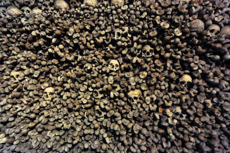 Accatastato su delle ossa e dello scheletro immagine stock