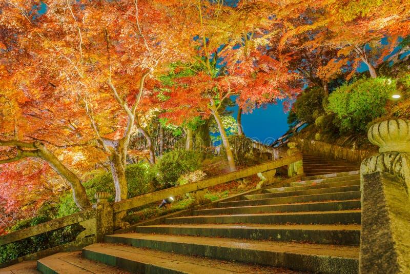 accenda la manifestazione del laser alla bella architettura in Kiyomizu-dera T fotografie stock