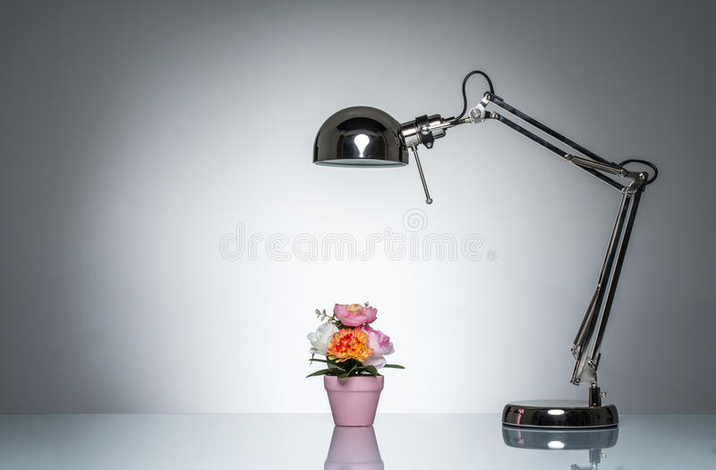 Accendere il vaso di fiore rosa con la lampada di scrittorio fotografia stock libera da diritti