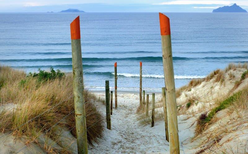 Accesso Ruakaka della spiaggia NZ fotografia stock libera da diritti