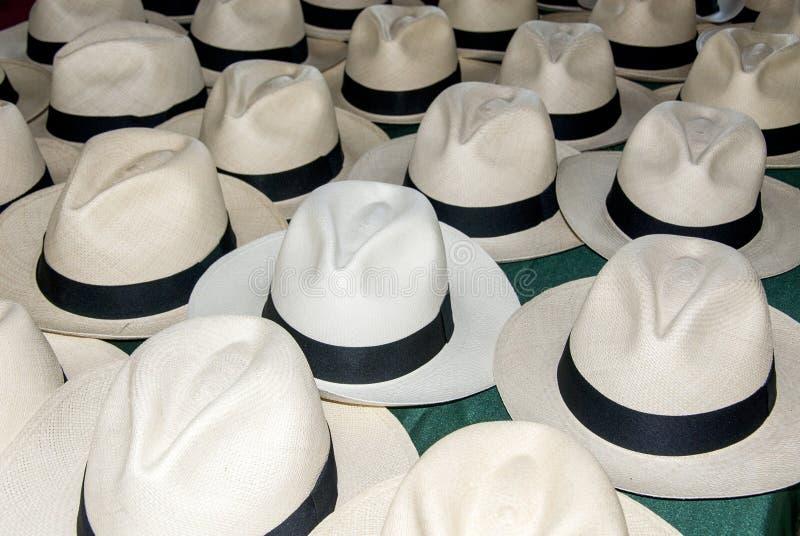 Accessoire - chapeaux de Panama photos stock