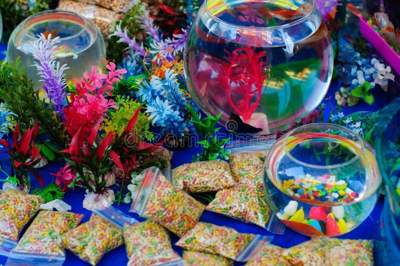 Accessoires faits sur commande d'aquarium et d'aquarium photographie stock