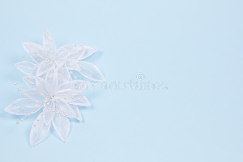 accessorie buttonhole płatków śluby zdjęcia royalty free