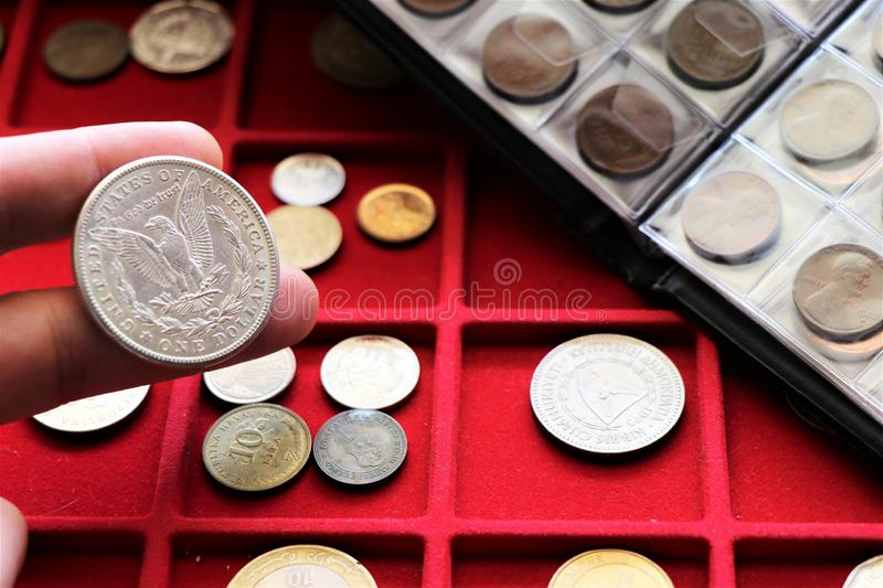 Numismatic job. World coins collection, investment. Accessories are visible in the background royalty free stock photos