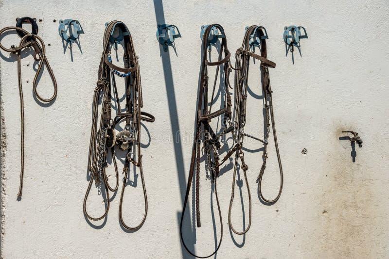 Accessry para a equitação na parede estável fotos de stock royalty free