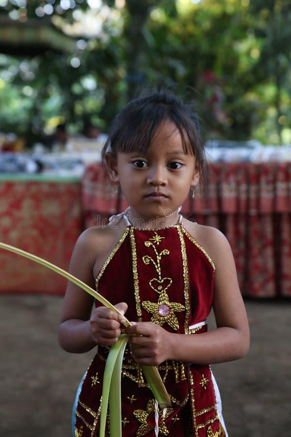 Acción de los huérfanos jovenes de un cacao, de un café y de una plantación de la especia en el pueblo de Kalibaru en Java Indone fotos de archivo libres de regalías