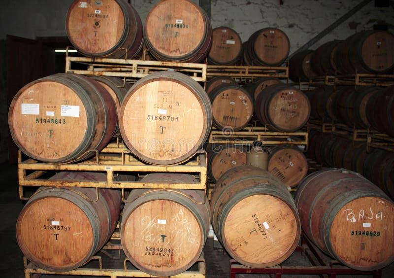 Acción del vino - Chile-XII - fotos de archivo libres de regalías