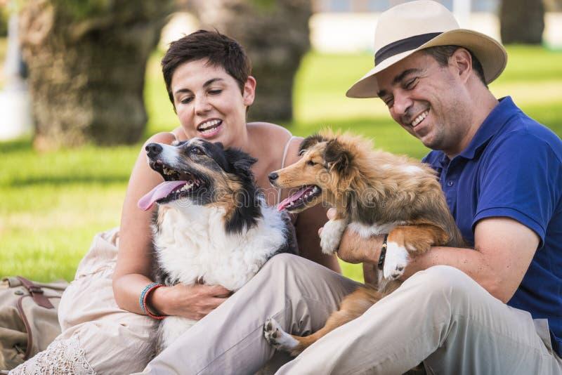 Accoppi degli amici nel gioco di amore e resti bene nell'attività di svago all'aperto con i loro due cani border collie e Shetlan fotografia stock libera da diritti
