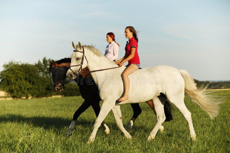 Accoppi delle ragazze sui cavalli che camminano sul prato nel tempo di pomeriggio dell'estate immagini stock