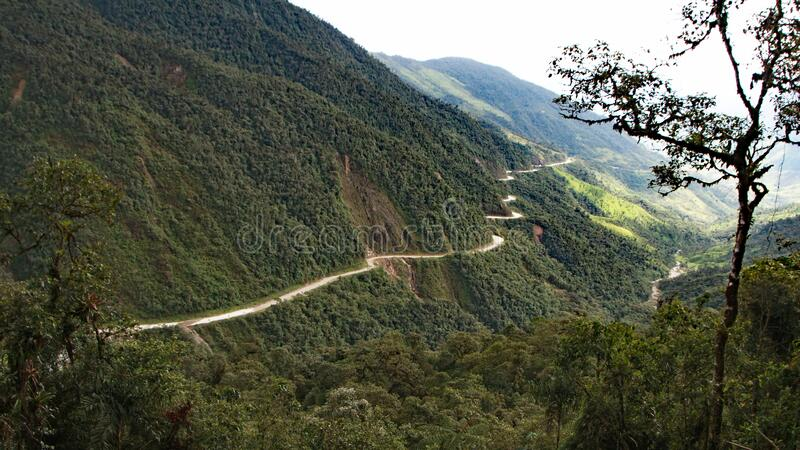 Road being constructed through the Amazonian rain forest of Ecuador. According to Reuters, as of March 20, 2020, there are 75 roads, totalling 12,000 km, slated stock photos