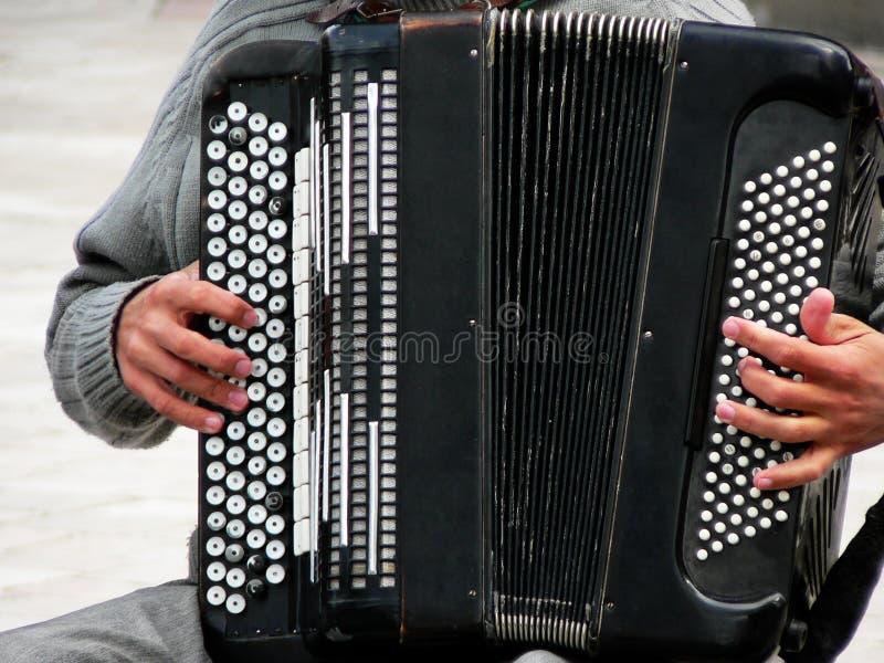 Accordion player stock image