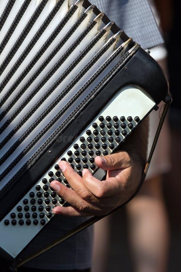 Free Accordion Player Stock Image - 22285071