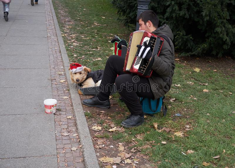 Accordion time in Zagreb stock images
