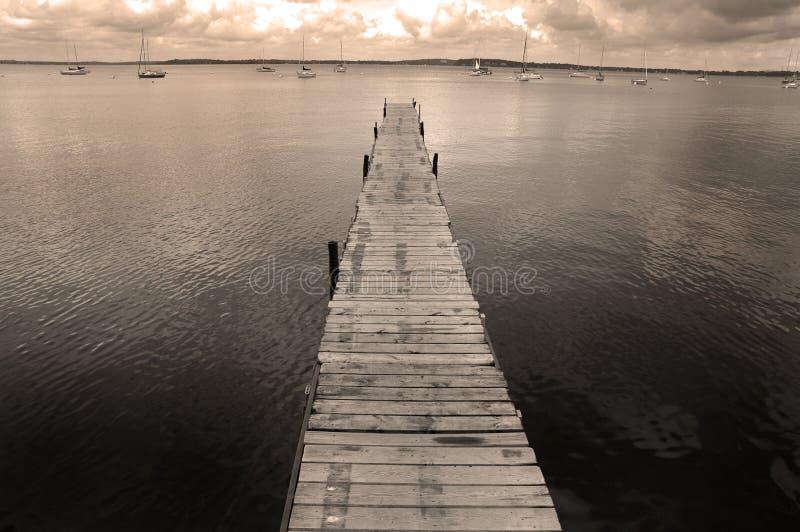 Accouplez le flottement dans l'eau de lac photo libre de droits