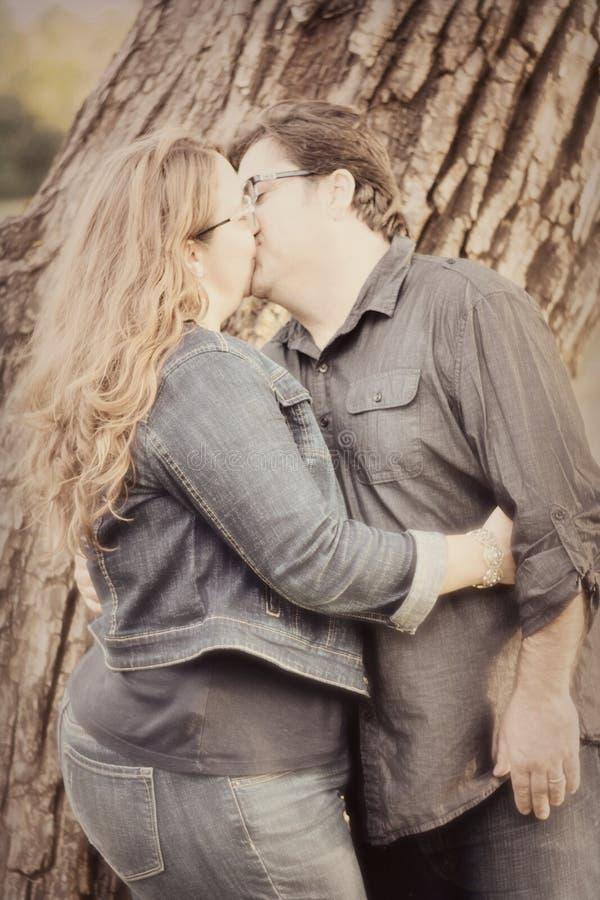 Accouplez les baisers photographie stock libre de droits