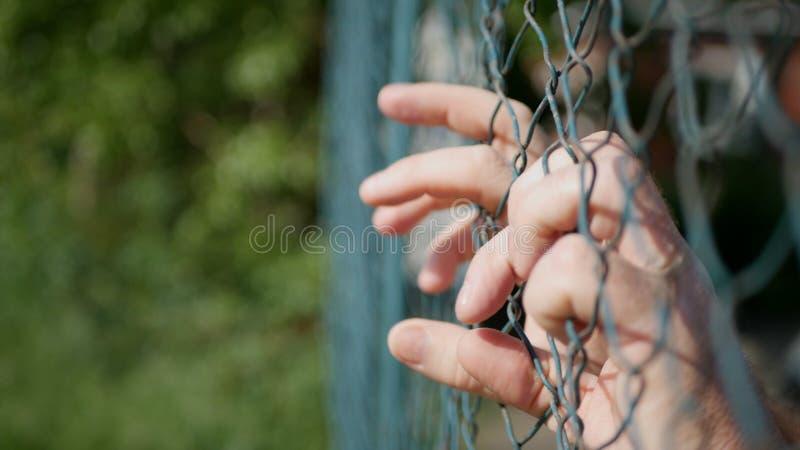 Accrocher de mains d'homme désespéré sur une barrière métallique image stock