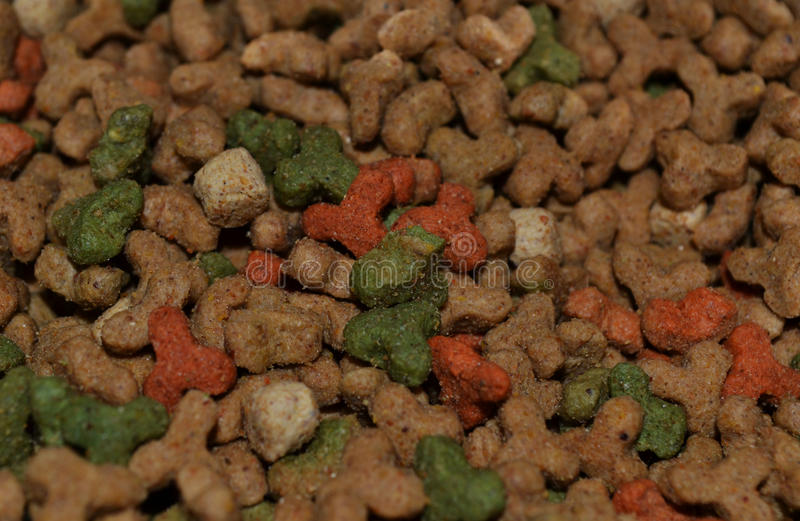 Accumulations fraîches d'aliments pour chats photos libres de droits