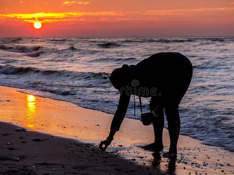 Accumulazione del Seashell fotografia stock