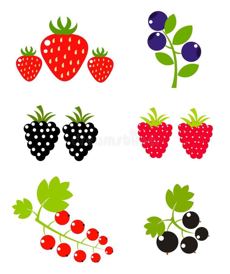 Accumulazione della frutta di bacca illustrazione di stock