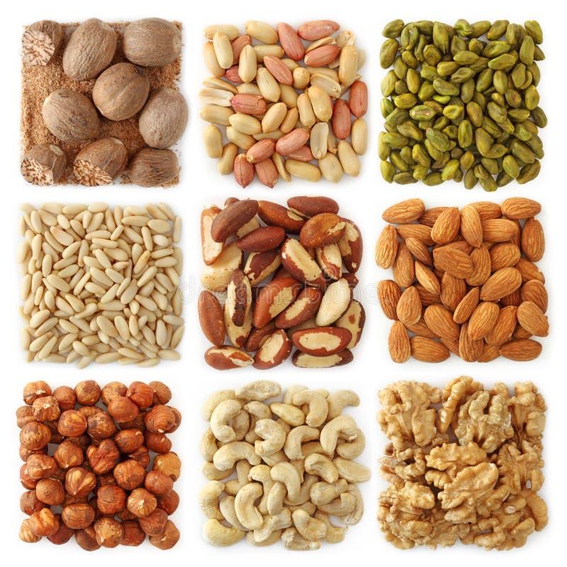 Accumulazione Nuts fotografie stock libere da diritti