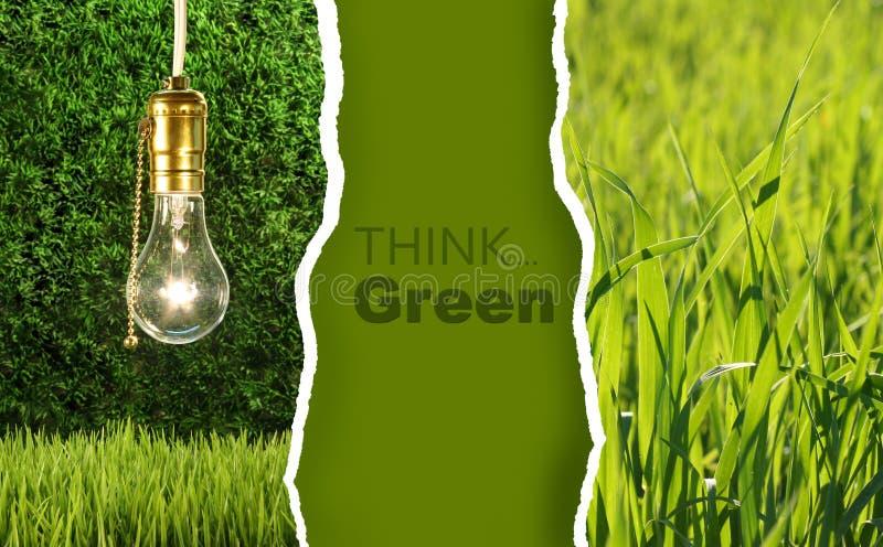 Accumulazione verde delle foto ecologiche fotografia stock libera da diritti