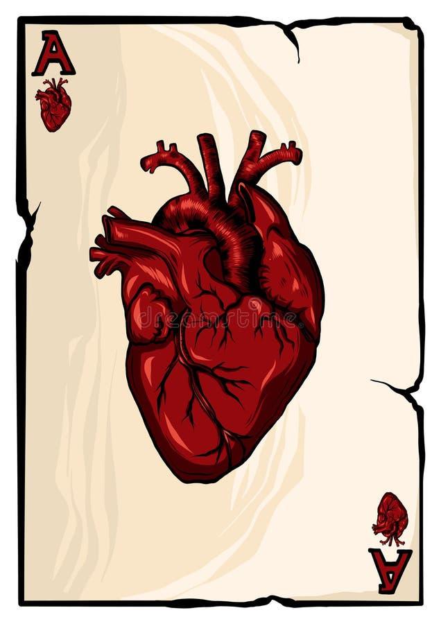 Ace de corações no fundo branco Ilustração ilustração royalty free