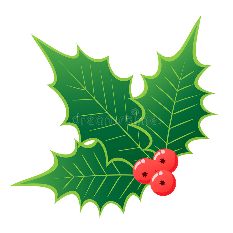 Acebo de la Navidad imágenes de archivo libres de regalías