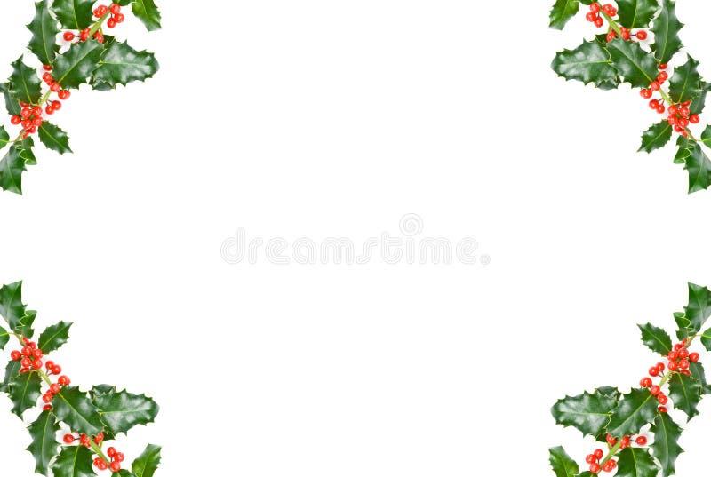 Download Acebo de la Navidad foto de archivo. Imagen de navidad - 7280760