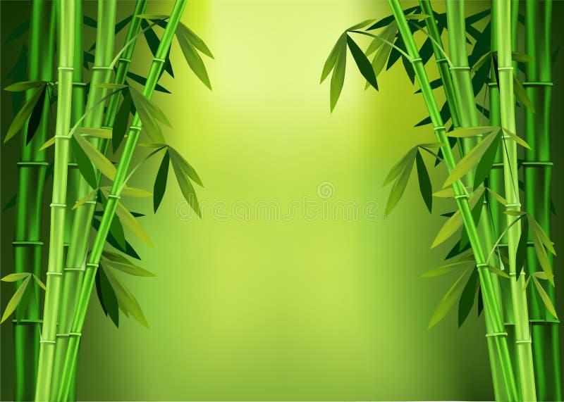 Acecha el bambú stock de ilustración