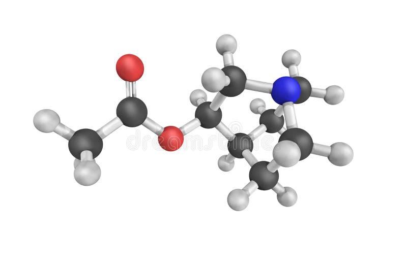 Aceclidine, ein miotic Mittel des Parasympathomimetic benutzt in der Festlichkeit vektor abbildung