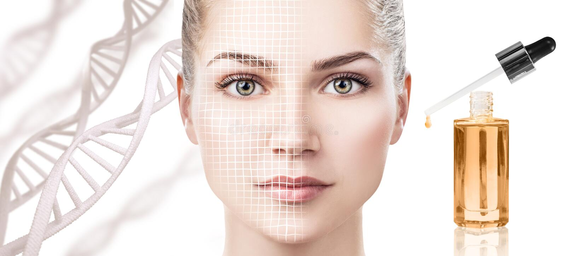 Aceite cosmético de la cartilla que se aplica en cara de la mujer joven fotos de archivo