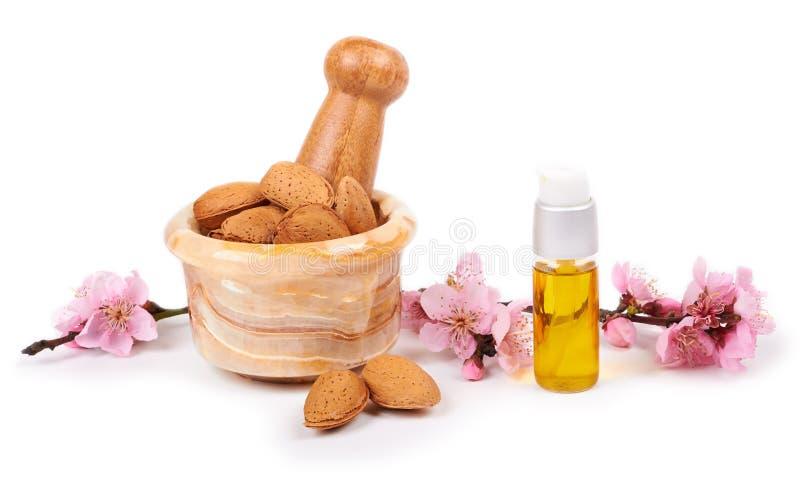 Aceite de almendra y nueces de la almendra con las flores imagen de archivo libre de regalías