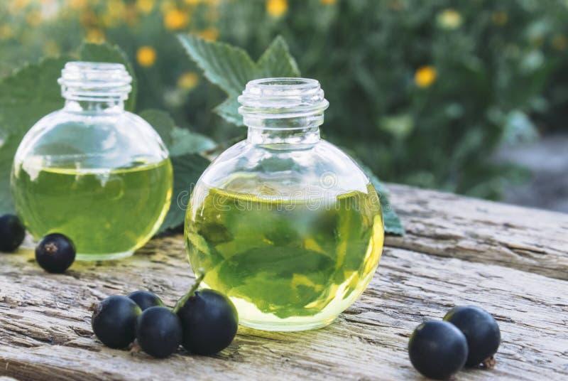 Aceite de la grosella negra en una botella en el fondo de viejos tableros Extracto de la medicina anticatarral de grosella negra imagenes de archivo