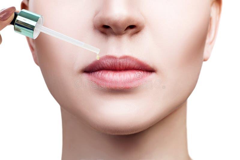 Aceite de los cosméticos que se aplica en los labios femeninos regordetes imagen de archivo