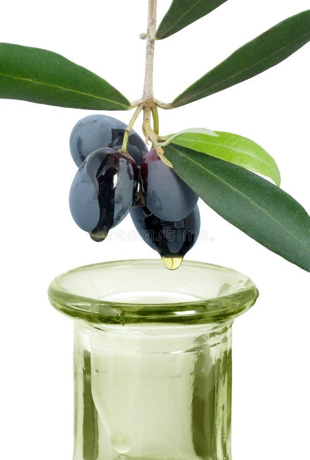 Aceite de oliva de la Virgen fotografía de archivo libre de regalías