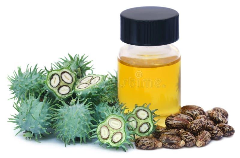 Aceite de ricino con las habas secas y verdes imagen de archivo