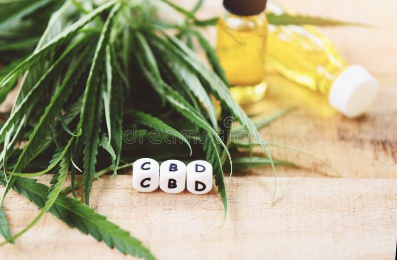 Aceite del cáñamo en la botella - extracto del aceite de CBD de las hojas de la marijuana de la hoja del cáñamo para el foco sele fotografía de archivo libre de regalías