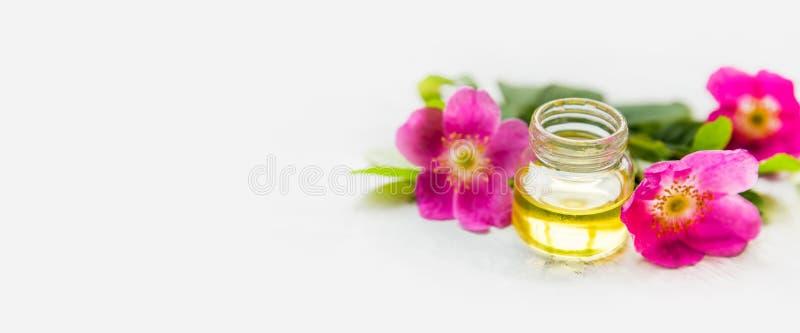 Aceite del escaramujo con las flores imágenes de archivo libres de regalías